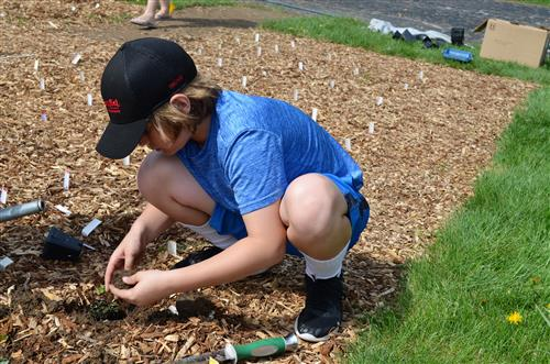 Photo of student planting